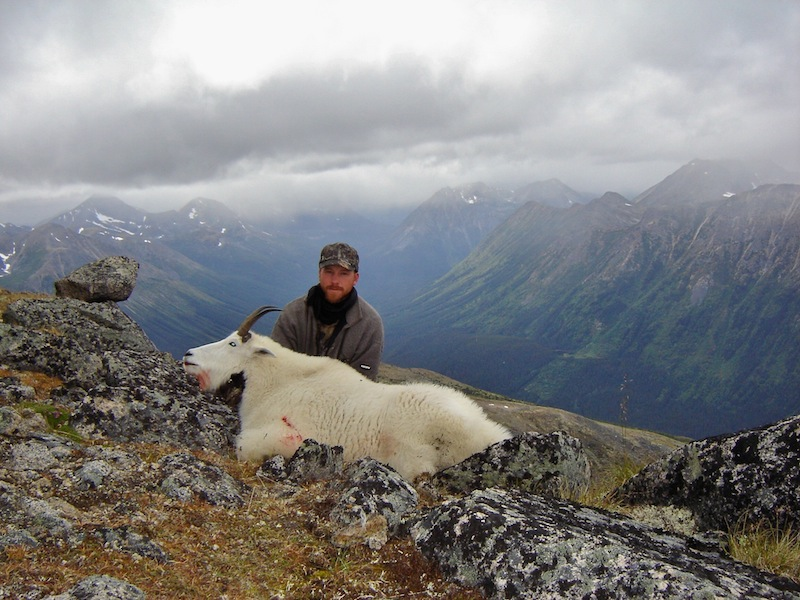 canada hunting mountain goat