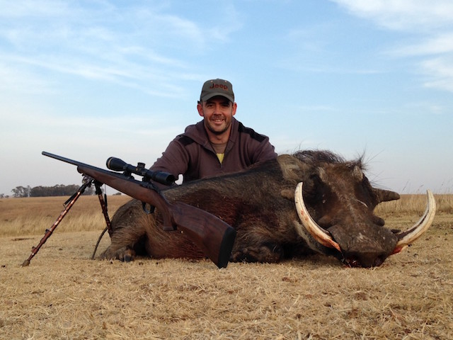 warthog hunting in south africajuly 2015
