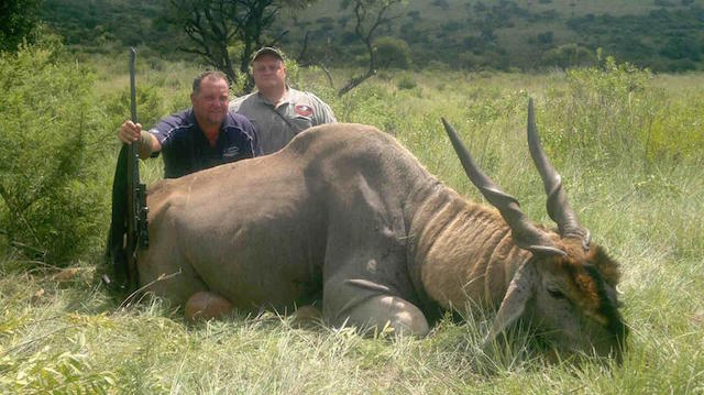 eland hunting in south africa 3 resized