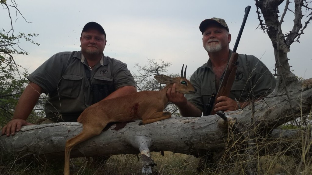 trophy steenbok hunting in south africa september 2015