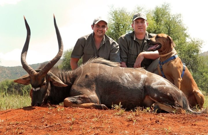trophy nyala hunting in south africa 4