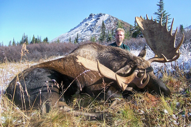 moose hunting in canada 2
