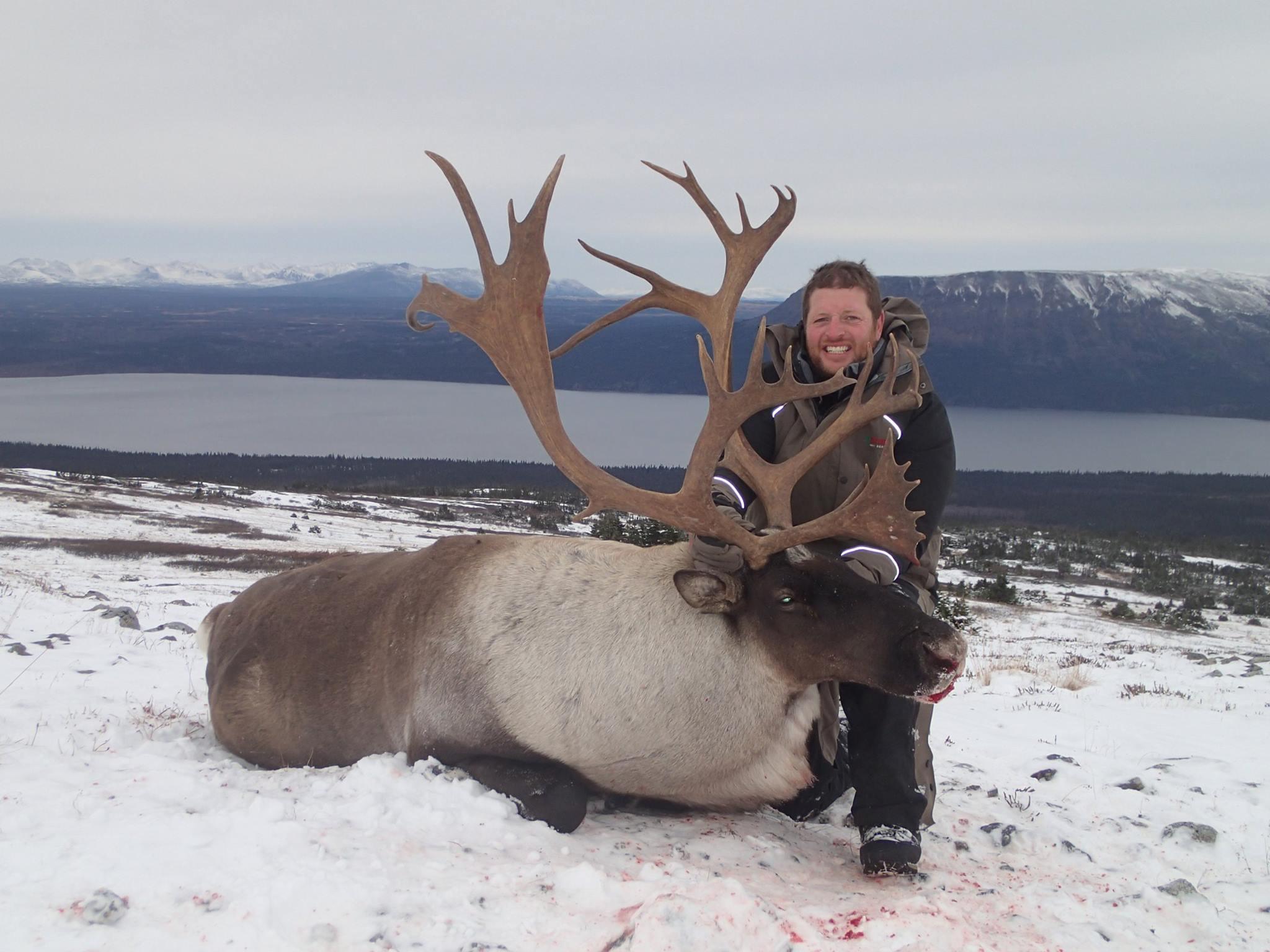 hunting bc caribou