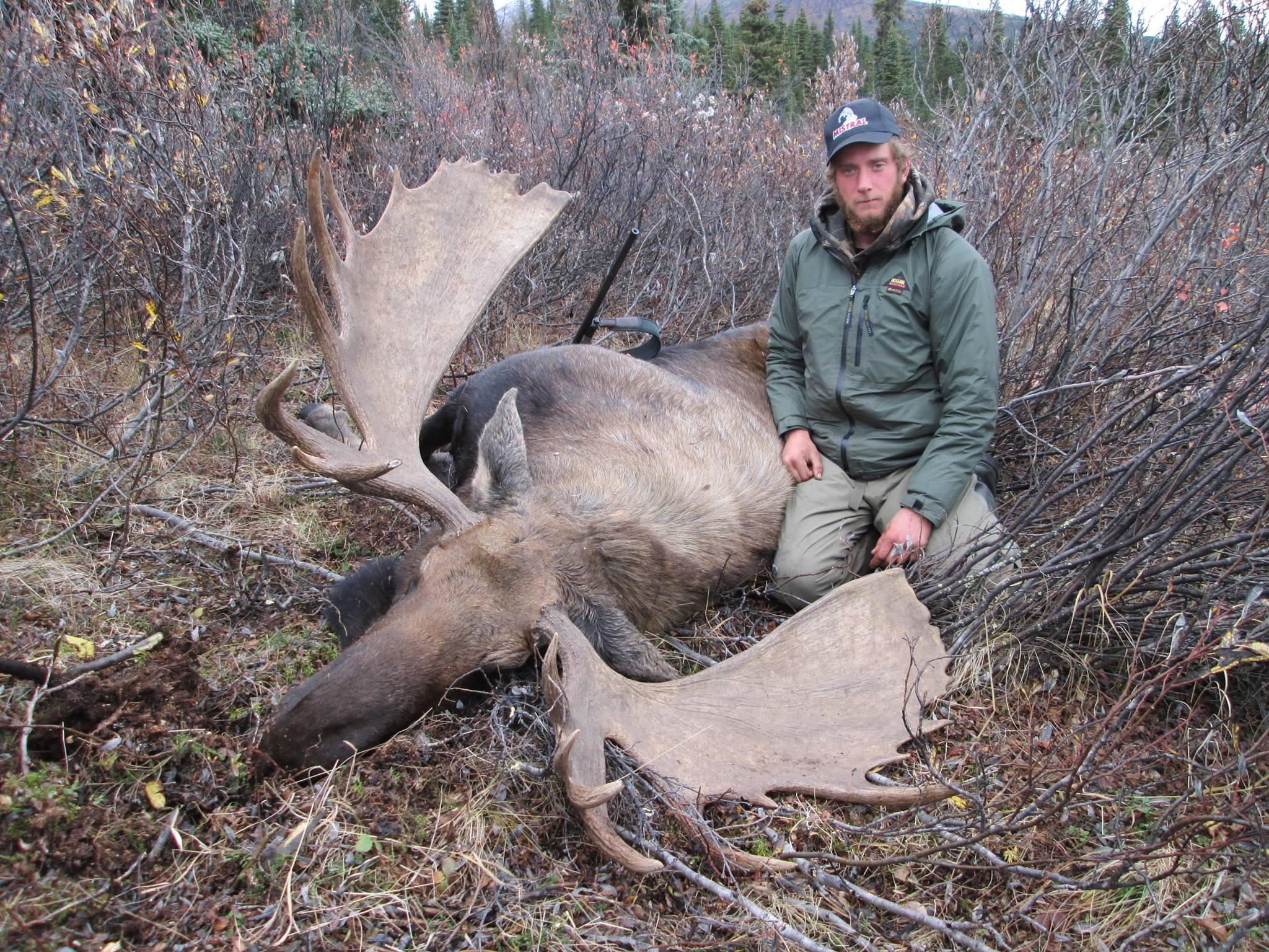 hunting bc moose