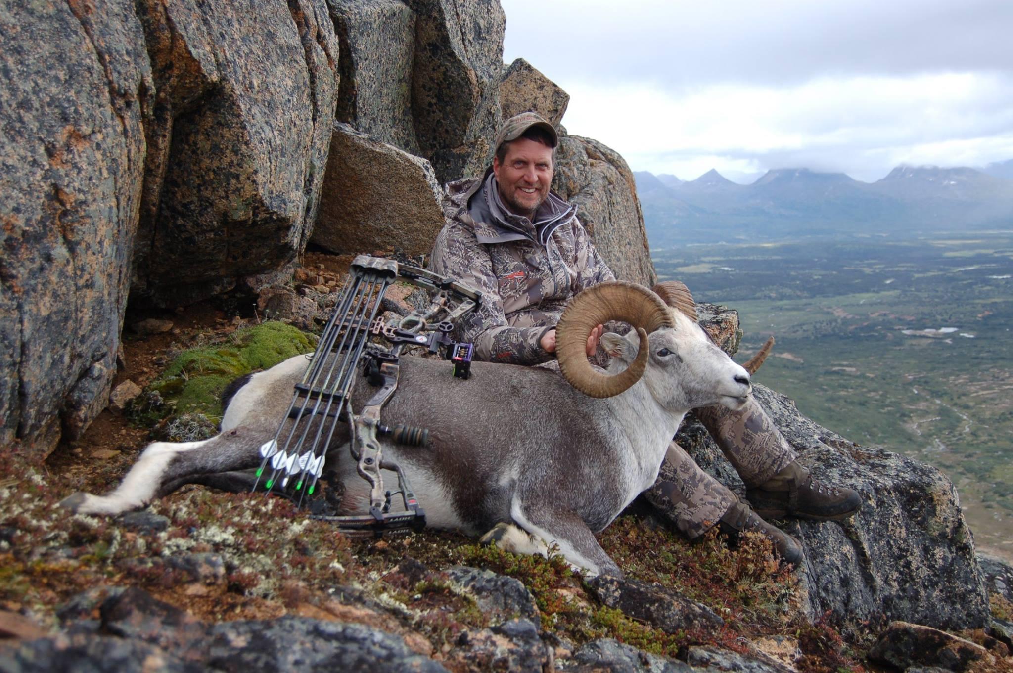 hunting bc stone sheep