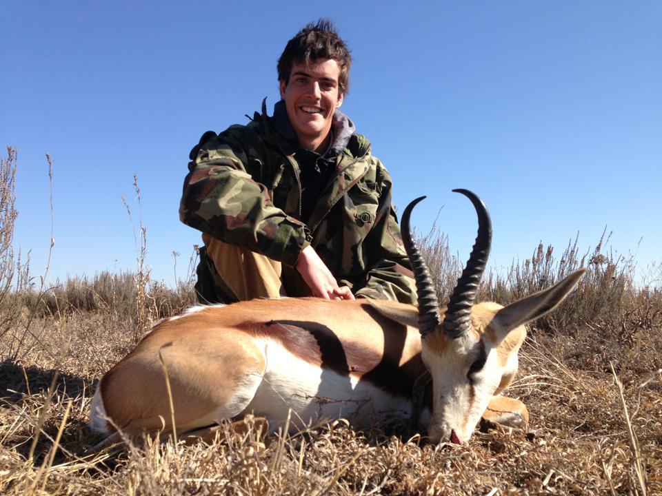 african plains game hunting safaris springbok