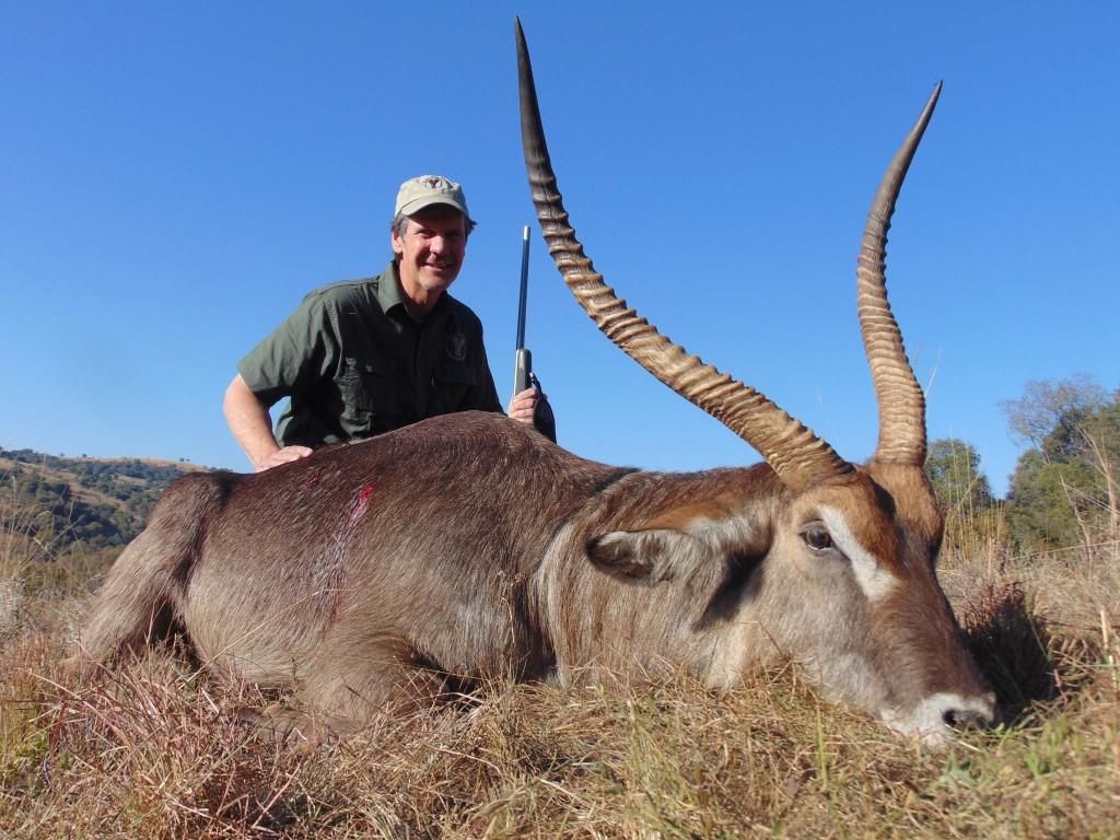 african plains game hunting safaris waterbuck