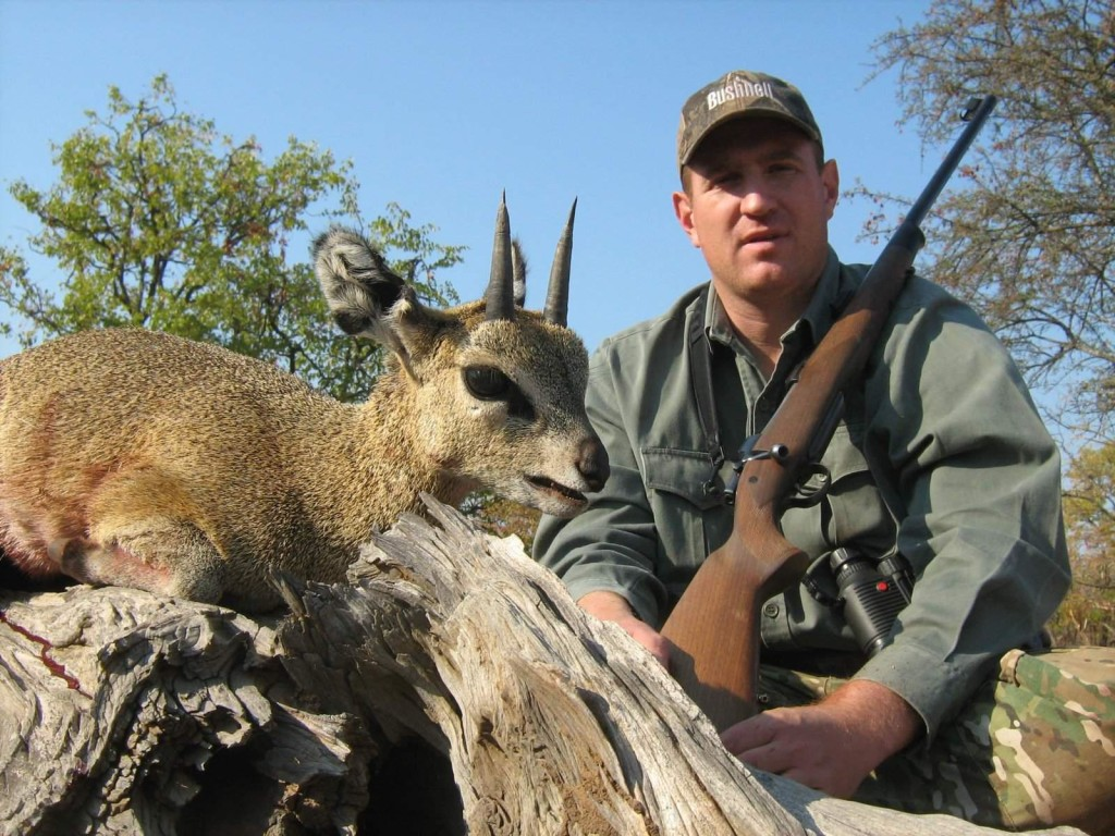 trophy klipspringer hunting in south africa 1