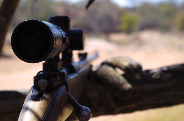Best Caliber For An African Safari Hunt scope