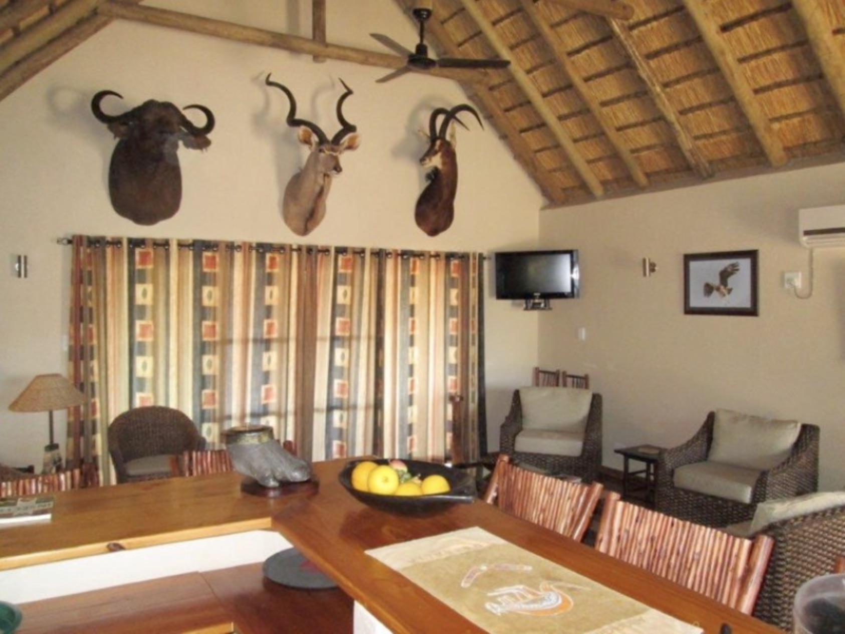 cape buffalo hunting in south africa accommodations 1