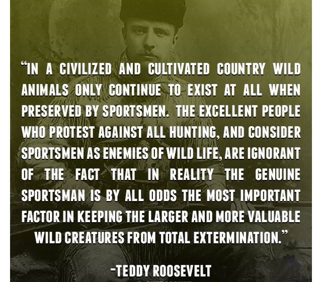 hunting conservation Here's How Hunting Promotes Wildlife Conservation roosevelt