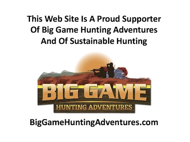 big game hunting adventures mozambique