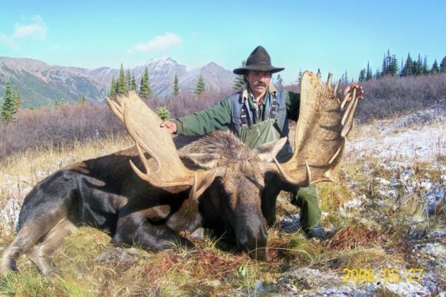 moose hunting in british columbia 4