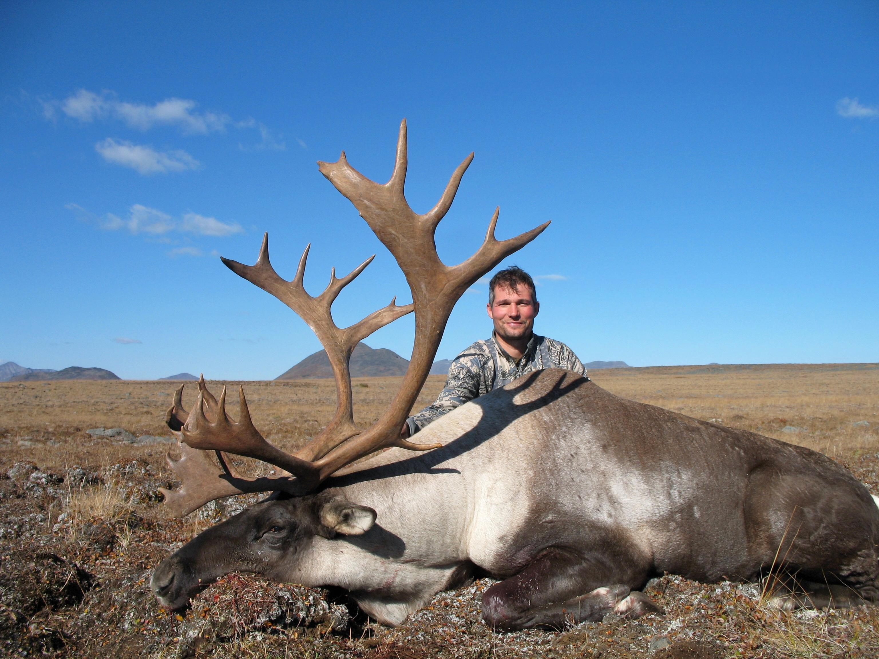 caribou hunting in british columbia 3