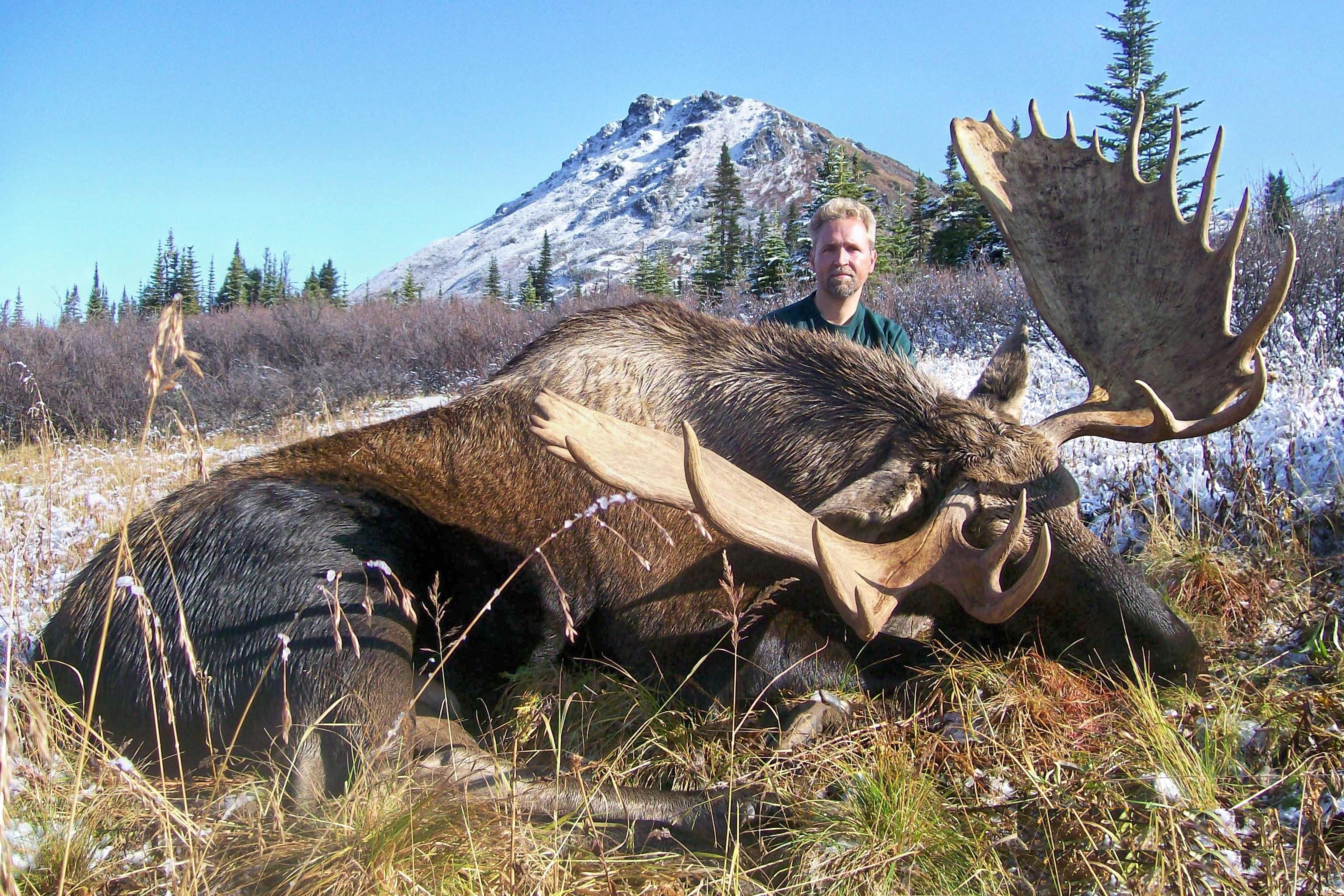 Moose deals canada