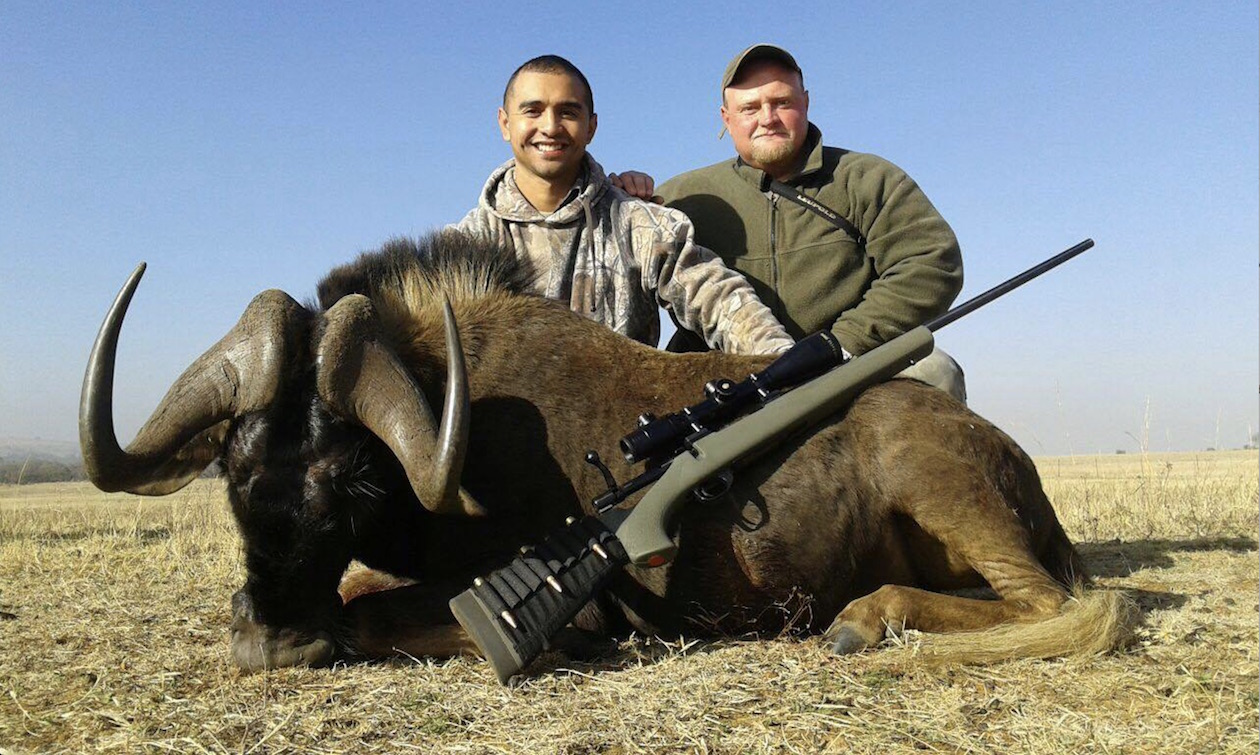 South Africa hunting photos black wildebeest