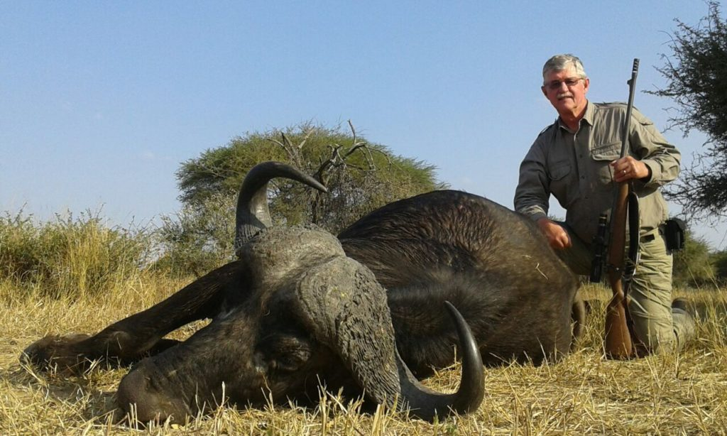 South Africa hunting photos cape buffalo