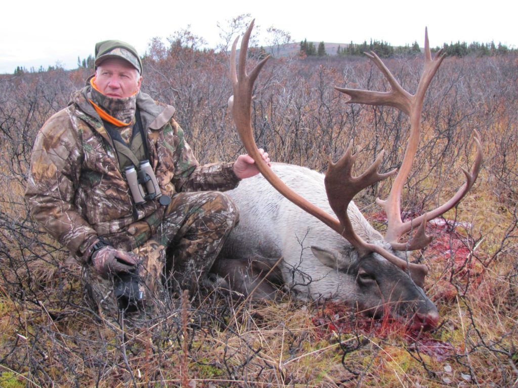 caribou hunting in british columbia 8
