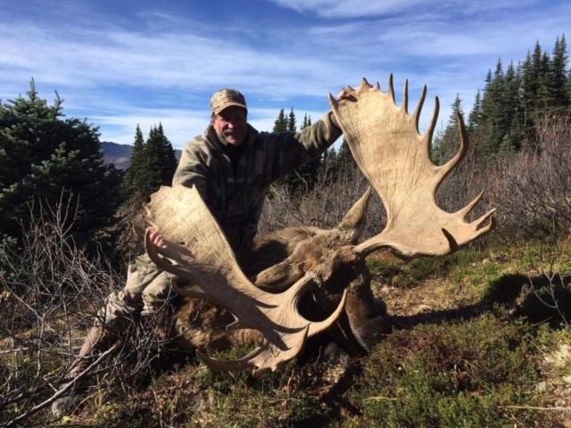 moose hunting in british columbia 10