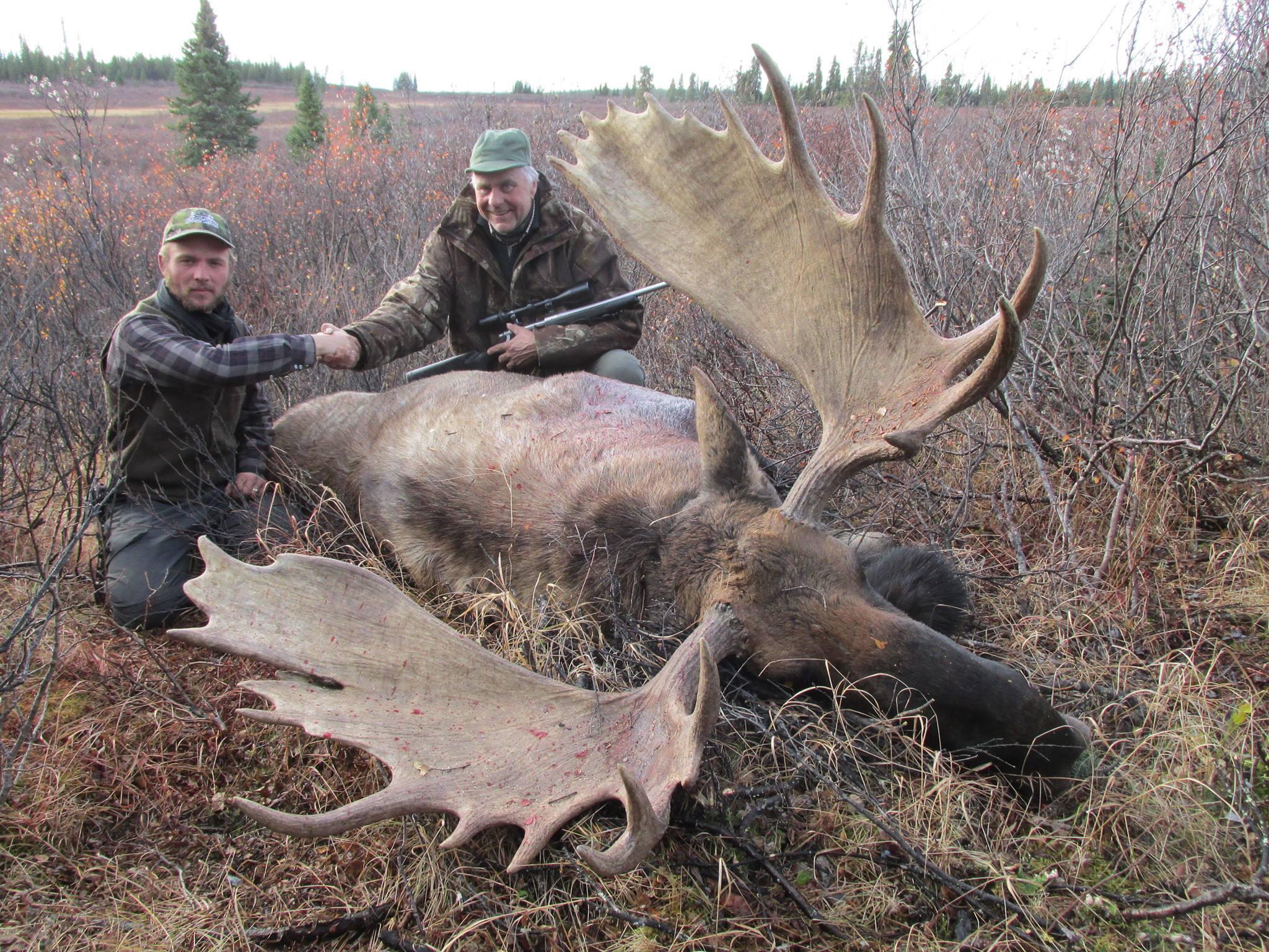 moose hunting in british columbia 3