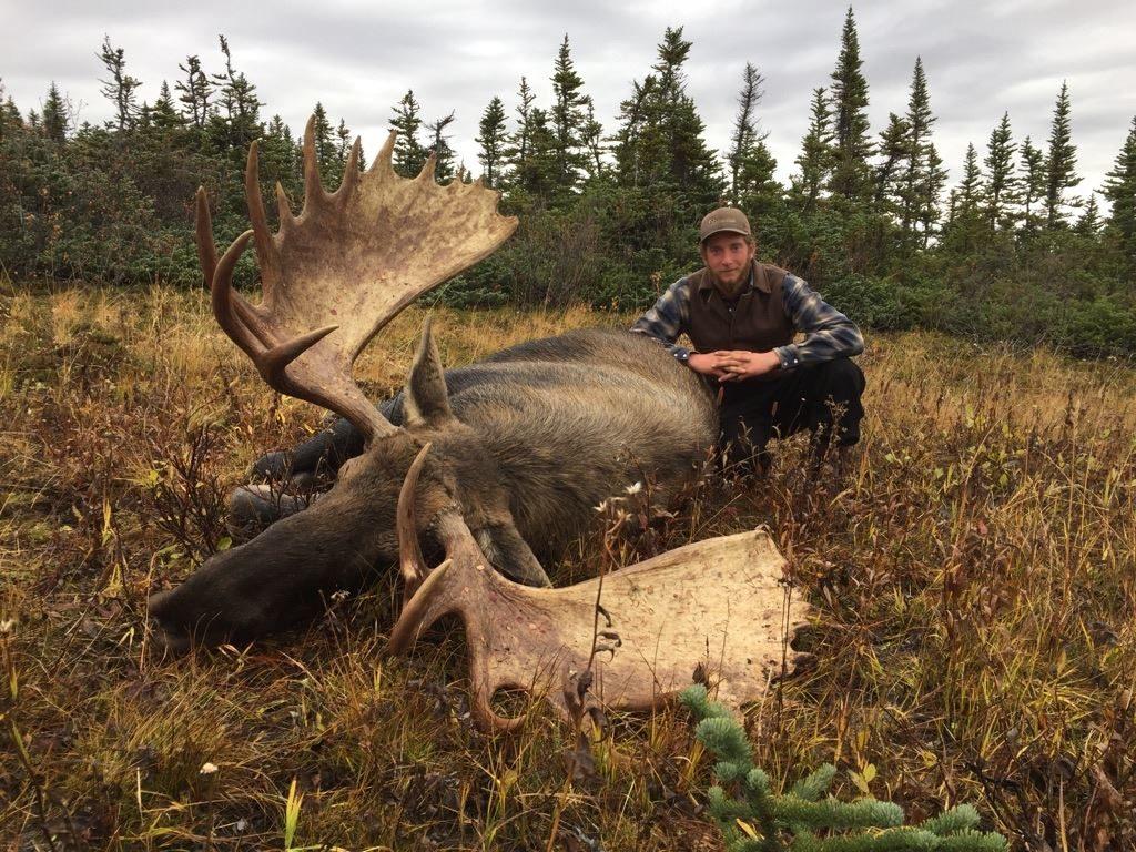 Canada hunting photos moose