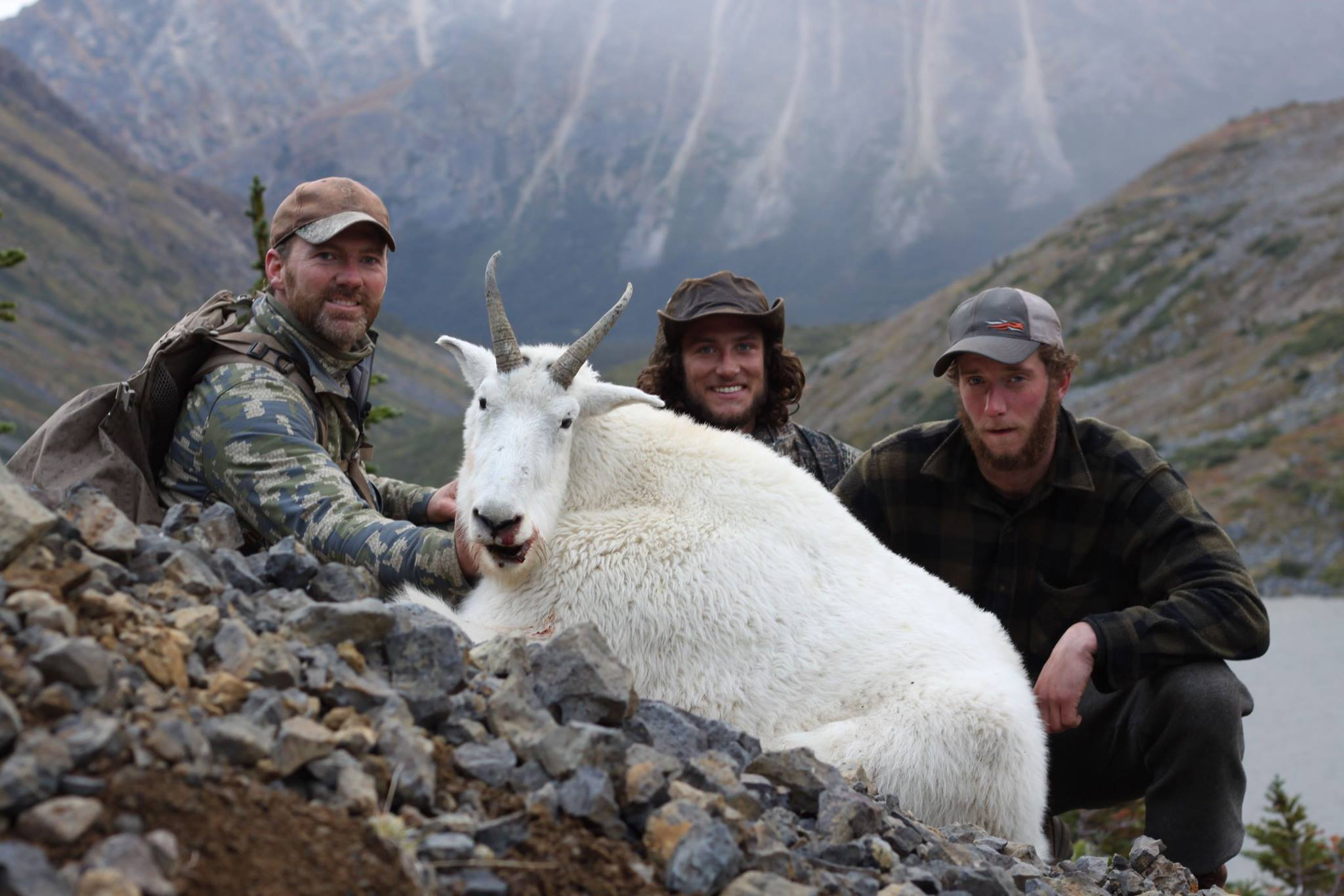 Canada hunting photos mountain goat