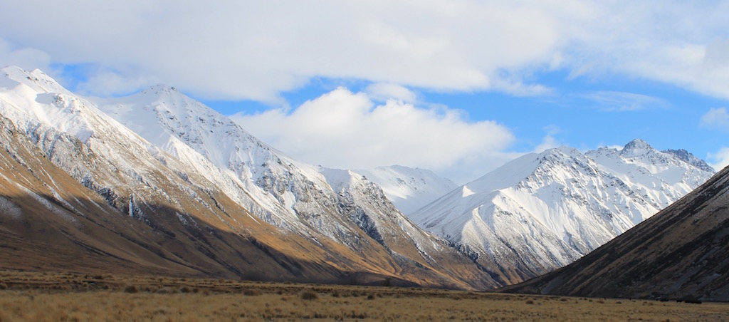 cahmois Hunting In New Zealand scenery