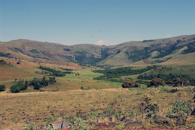 picture of south africa hunting scenery highveld